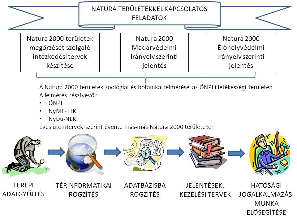 A Natura 2000 területek zoológiai és botanikai felmérése az ÖNPI illetékességi területén A felmérés résztvevői: • ÖNPI • NyME-TTK • NyDu-NEKI Éves üte