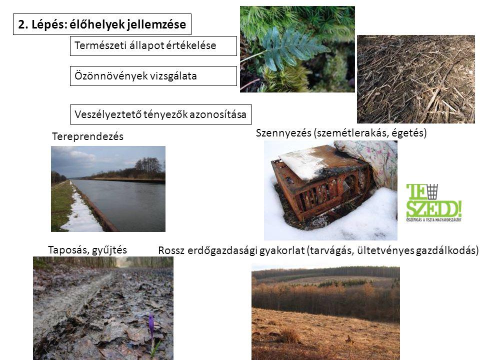 2. Lépés: élőhelyek jellemzése Természeti állapot értékelése Veszélyeztető tényezők azonosítása Taposás, gyűjtés Szennyezés (szemétlerakás, égetés) Te