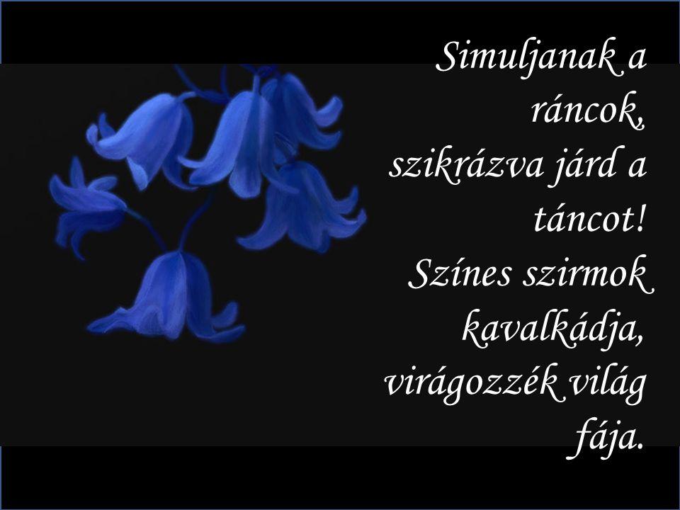 Egy szál virág meghajol, gyengéd kézzel átkarol. A szeme a szemedbe néz, távolról ölel a kéz.