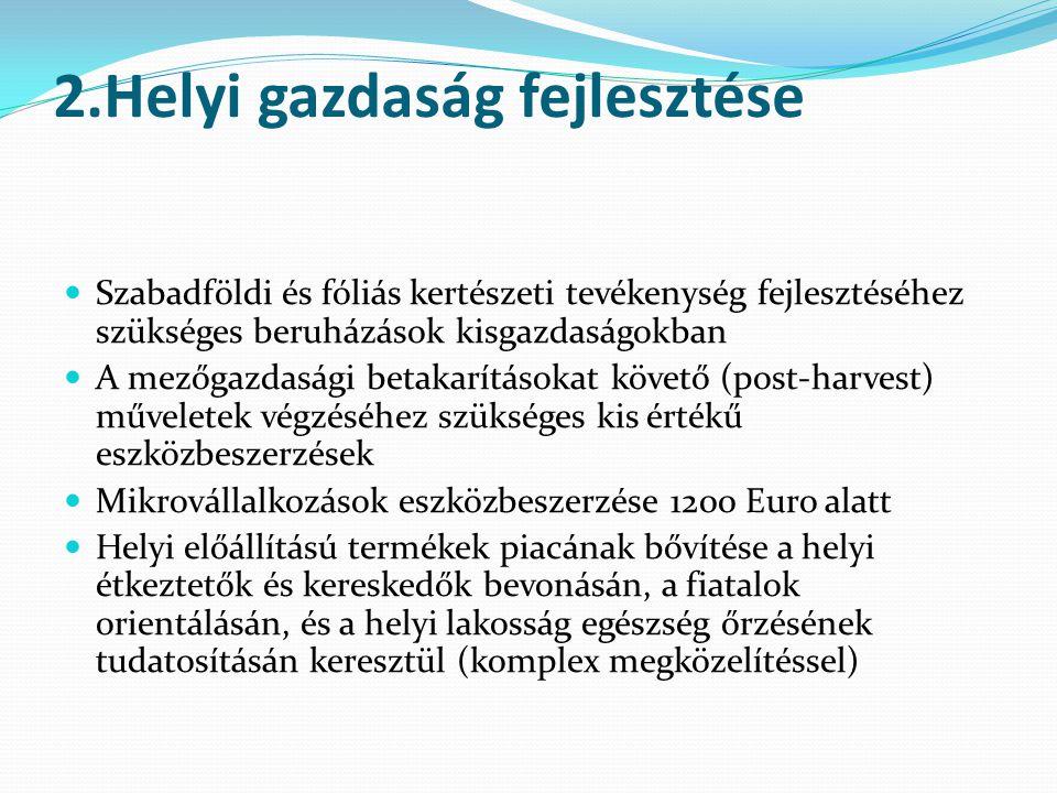 2.Helyi gazdaság fejlesztése  Szabadföldi és fóliás kertészeti tevékenység fejlesztéséhez szükséges beruházások kisgazdaságokban  A mezőgazdasági betakarításokat követő (post-harvest) műveletek végzéséhez szükséges kis értékű eszközbeszerzések  Mikrovállalkozások eszközbeszerzése 1200 Euro alatt  Helyi előállítású termékek piacának bővítése a helyi étkeztetők és kereskedők bevonásán, a fiatalok orientálásán, és a helyi lakosság egészség őrzésének tudatosításán keresztül (komplex megközelítéssel)