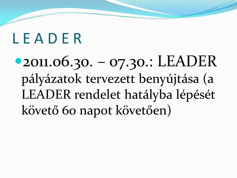 L E A D E R  2011.06.30.
