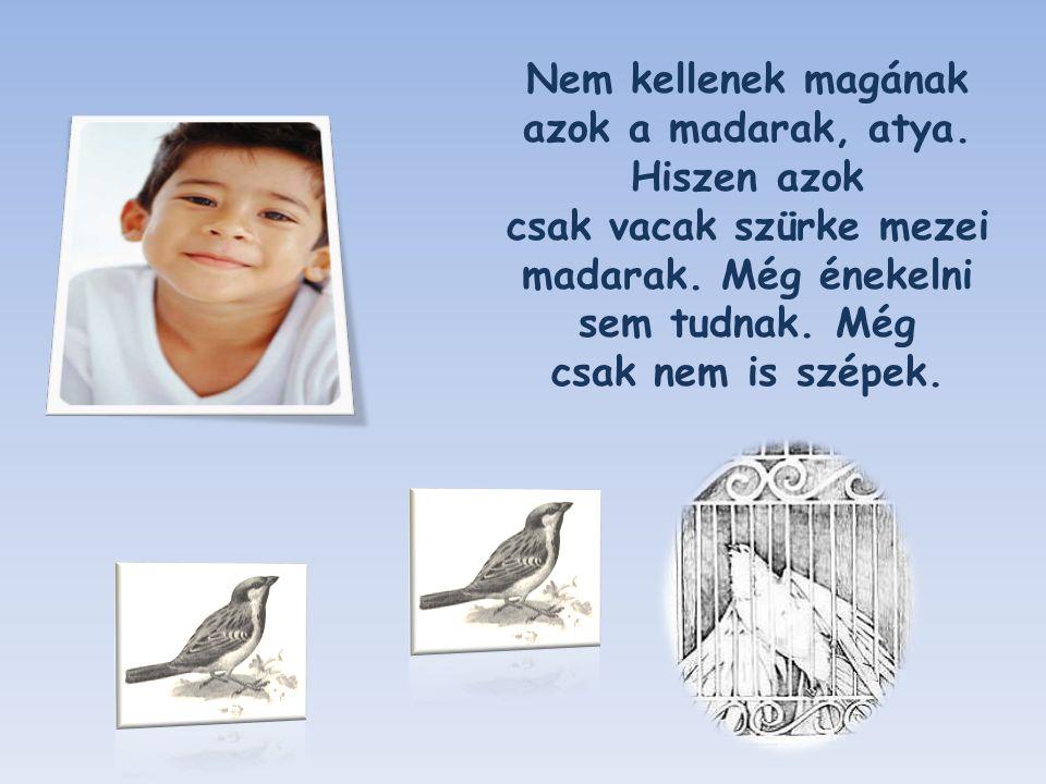 Hallgattam egy kicsit, aztán ismét megszólaltam: - Fiam, mennyit kérsz a madarakért?