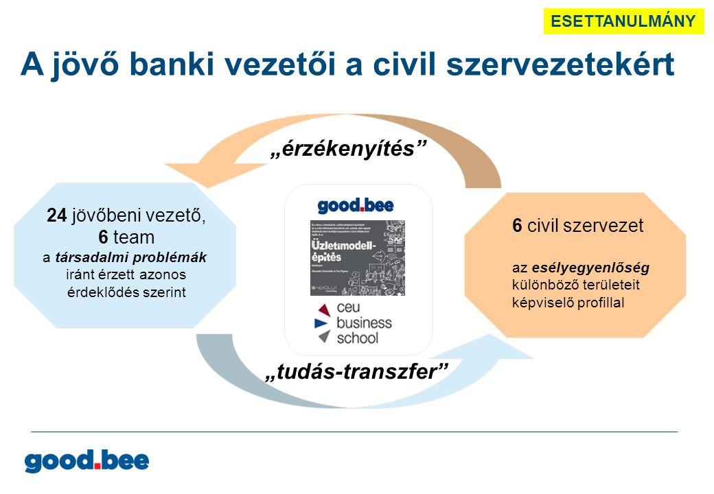 """6 TEAM, 24 EBH-s kollégából, az azonos szociális érdeklődési kör mentén …a civilek számára is haszno- sítható tudással (pénzügyi és értékesítési ismeretek, marketing, IT, projekt-menedzsment, stb.) 6 civil SZERVEZET, a csoportok választása alapján, a good.bee és az ERSTE Alapít- vány által felajánlott 16-ból …melyek az esélyegyen- lőségi területek teljes skáláját reprezentálják az esély-egyenlőségi kérdések iránti érzékenység elmélyítése """"tudás-átadás Start: április 17., egész napos kick-off rendezvény az EBH helyéről a gazdasági és társadalmi környezetben Zárás: június 26., az EBH menedzsmentje számára tartott prezentációs nap keretében … a program zárása után a 6 szervezet Üzleti Modelljének a fejlesztését a good.bee program segíti ERSTE Stiftung ESETTANULMÁNY Háttér-dia"""