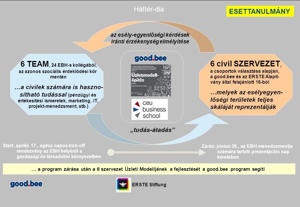 6 TEAM, 24 EBH-s kollégából, az azonos szociális érdeklődési kör mentén …a civilek számára is haszno- sítható tudással (pénzügyi és értékesítési ismer