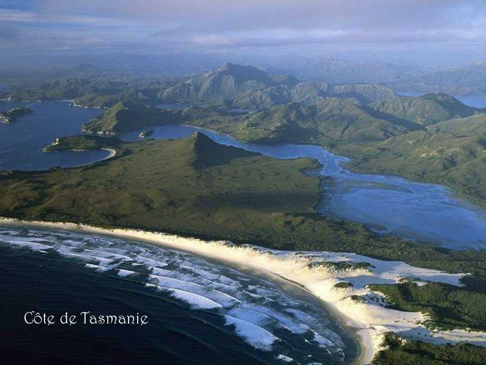 Cradle Mountains - Tasmanie