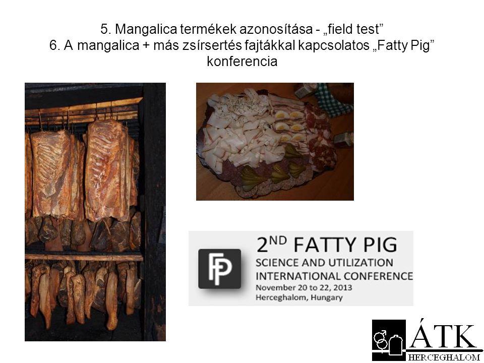 """5. Mangalica termékek azonosítása - """"field test"""" 6. A mangalica + más zsírsertés fajtákkal kapcsolatos """"Fatty Pig"""" konferencia"""