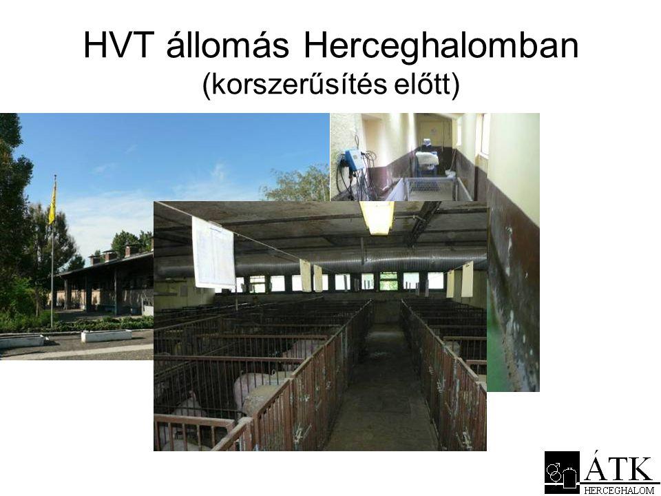HVT állomás Herceghalomban (korszerűsítés előtt)