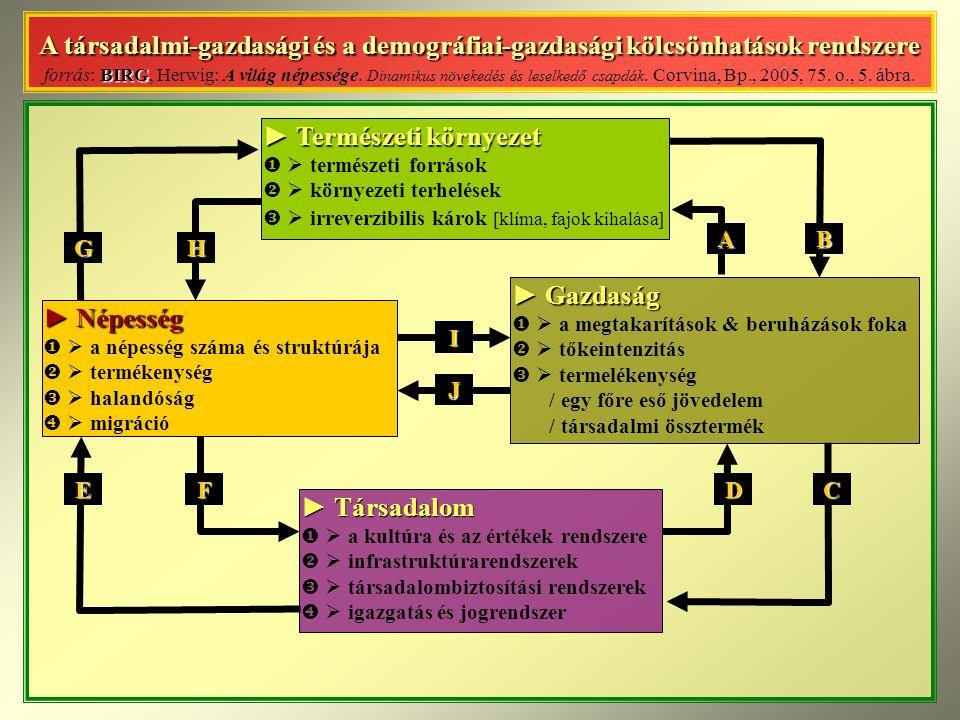A társadalmi-gazdasági és a demográfiai-gazdasági kölcsönhatások rendszere BIRG A társadalmi-gazdasági és a demográfiai-gazdasági kölcsönhatások rendszere forrás: BIRG, Herwig: A világ népessége.