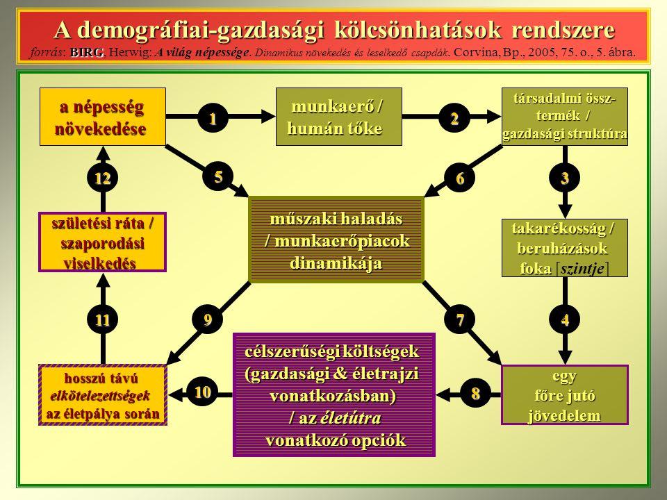 A demográfiai-gazdasági kölcsönhatások rendszere BIRG A demográfiai-gazdasági kölcsönhatások rendszere forrás: BIRG, Herwig: A világ népessége.