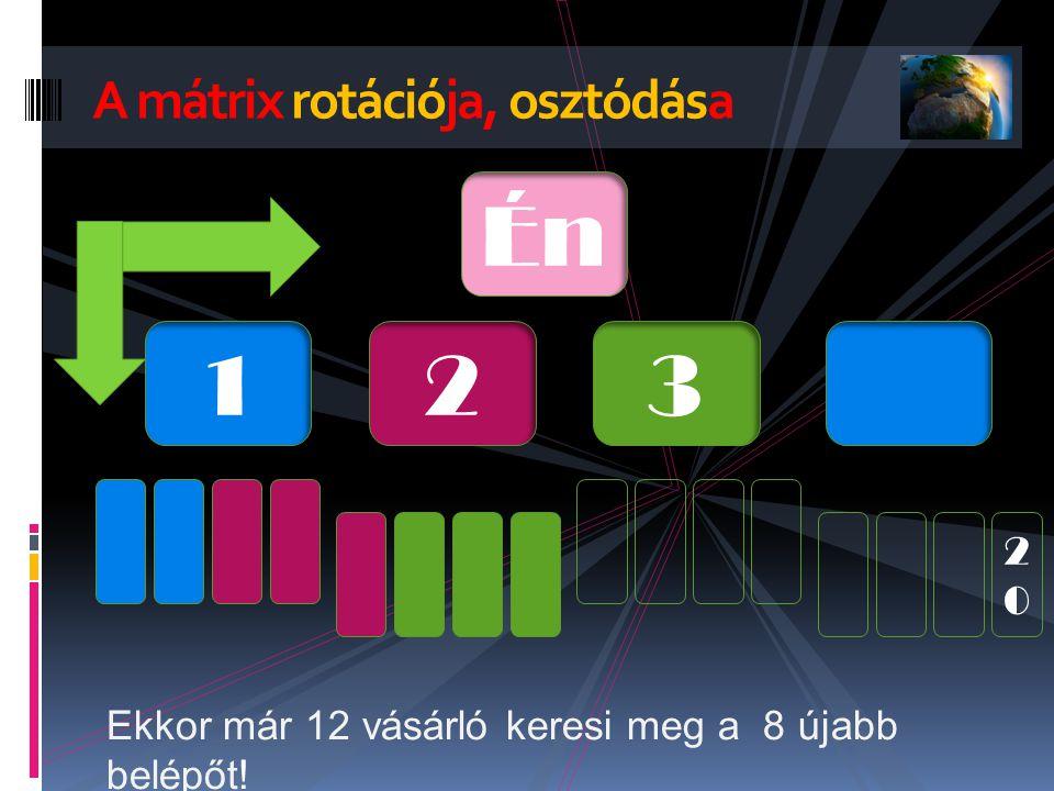 A mátrix rotációja, osztódása Én 123 2020 Ekkor már 12 vásárló keresi meg a 8 újabb belépőt!