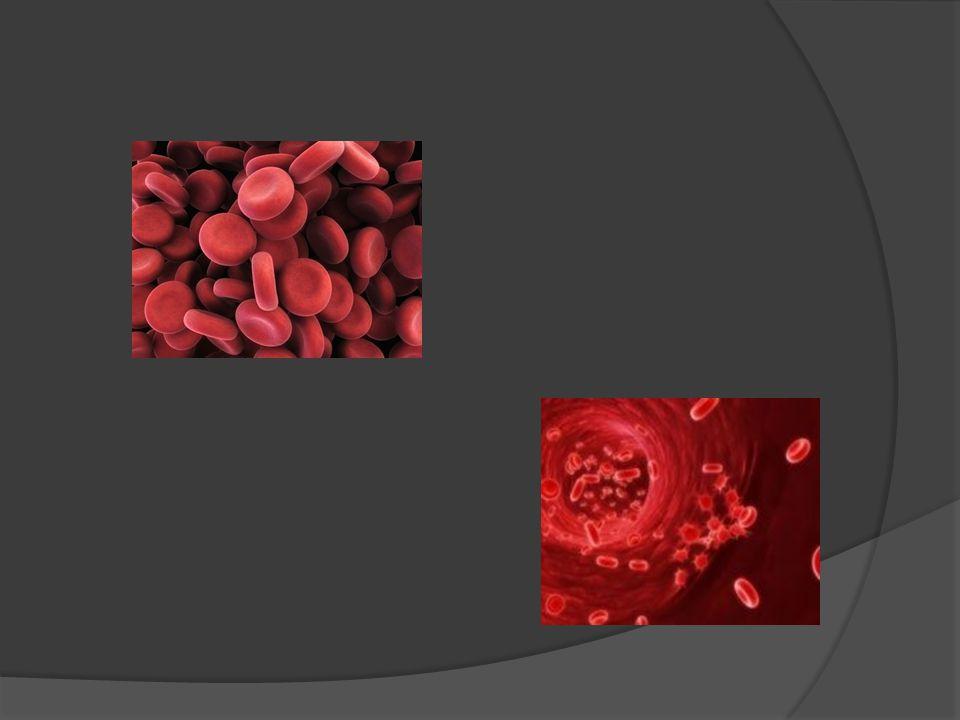Vércsoport meghatározás  A különböző vércsoportok a vér eltérő tulajdonságaira utalnak.