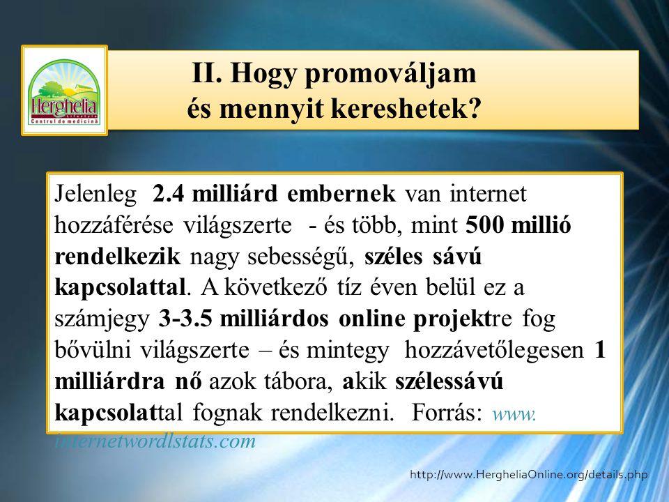 II. Hogy promováljam és mennyit kereshetek? II. Hogy promováljam és mennyit kereshetek? Jelenleg 2.4 milliárd embernek van internet hozzáférése világs