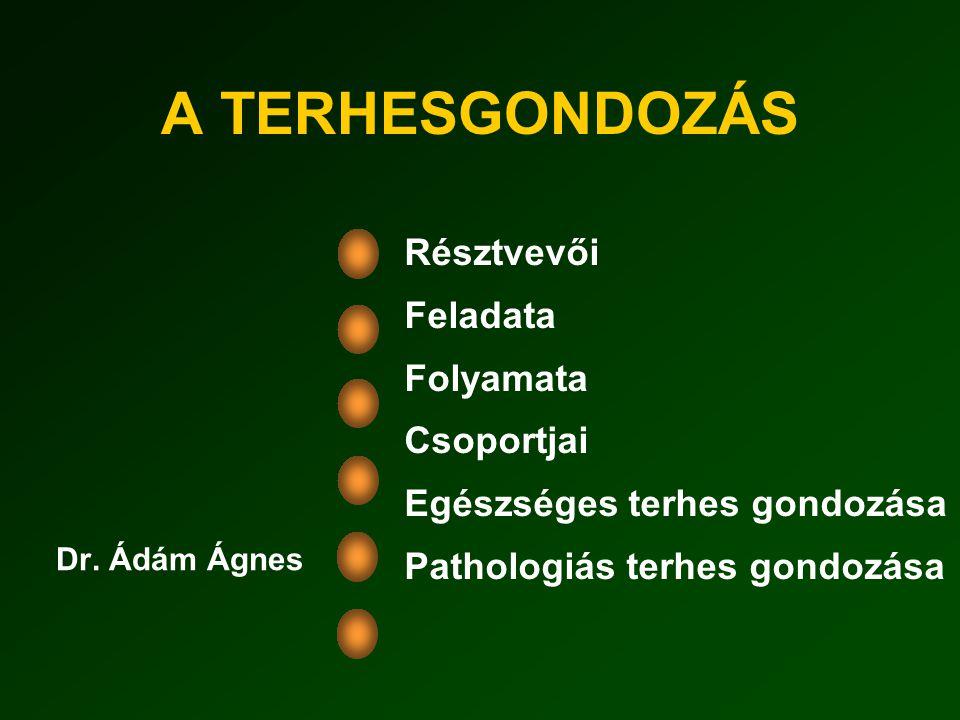 A TERHESGONDOZÁS Dr.