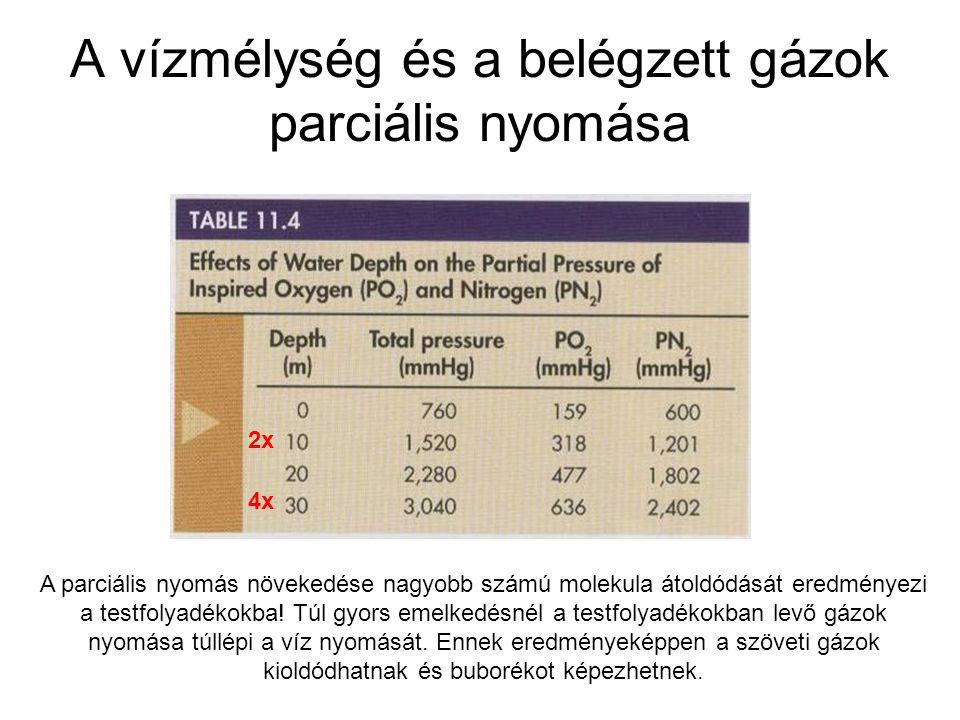 A vízmélység és a belégzett gázok parciális nyomása 2x 4x A parciális nyomás növekedése nagyobb számú molekula átoldódását eredményezi a testfolyadéko