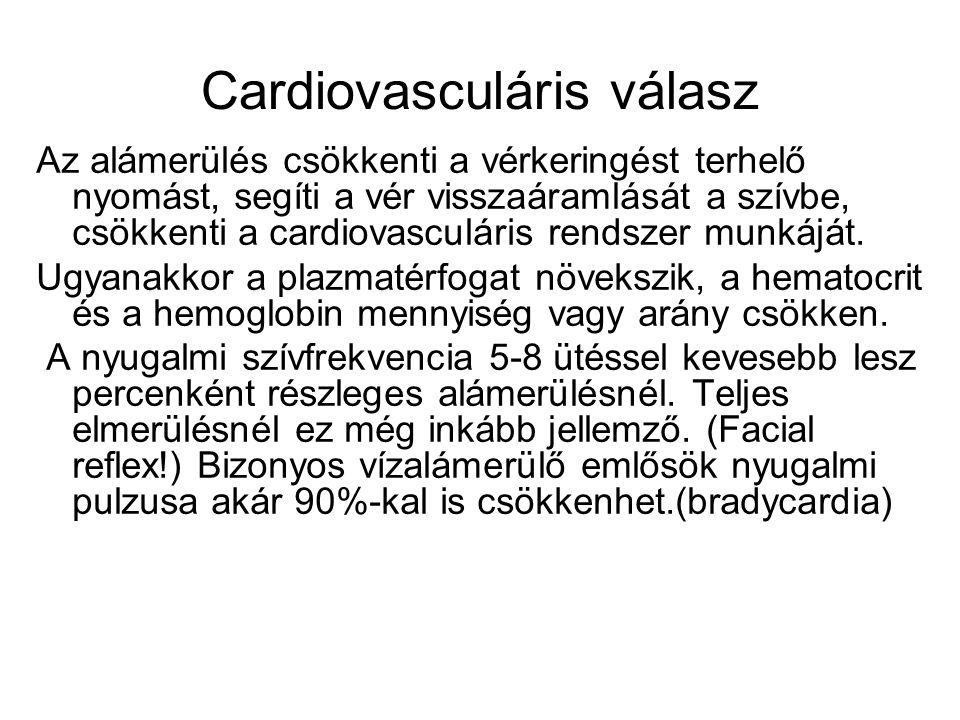 Cardiovasculáris válasz Az alámerülés csökkenti a vérkeringést terhelő nyomást, segíti a vér visszaáramlását a szívbe, csökkenti a cardiovasculáris re