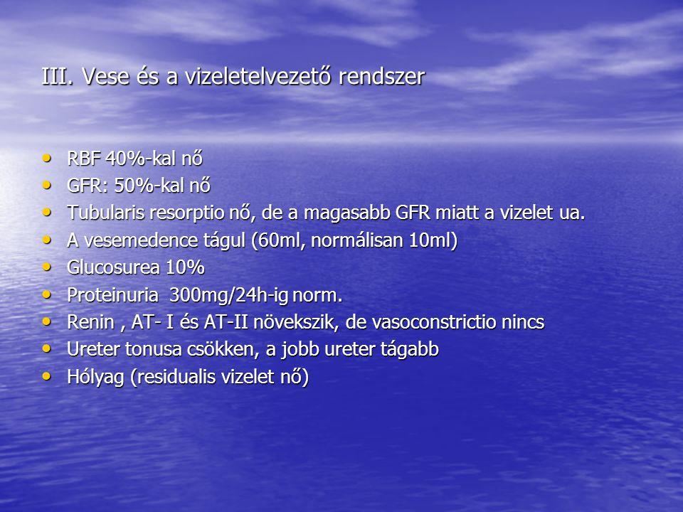 III. Vese és a vizeletelvezető rendszer • RBF 40%-kal nő • GFR: 50%-kal nő • Tubularis resorptio nő, de a magasabb GFR miatt a vizelet ua. • A vesemed