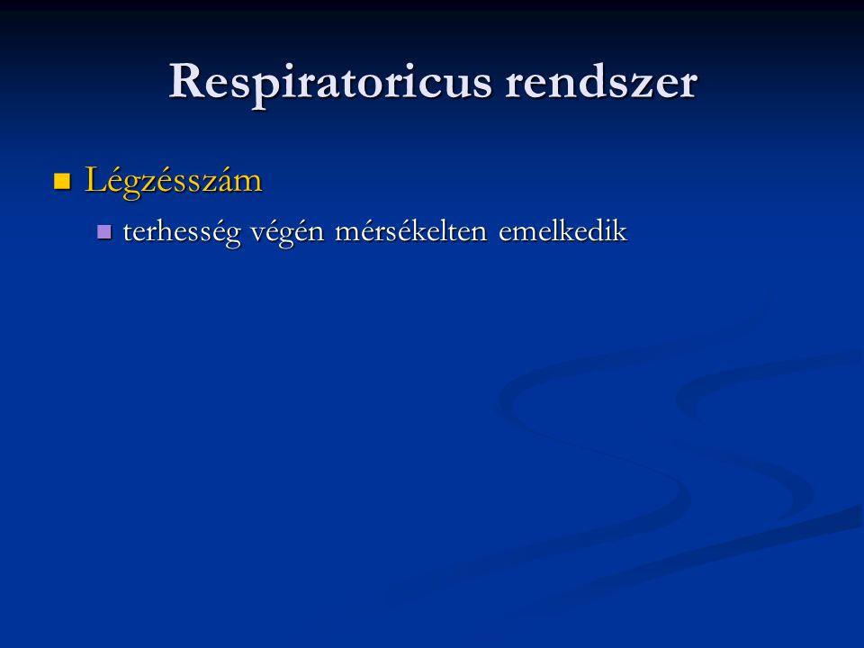 Respiratoricus rendszer  Légzésszám  terhesség végén mérsékelten emelkedik