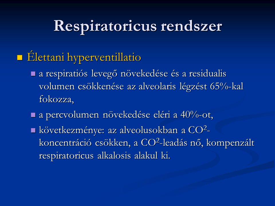 Respiratoricus rendszer  Élettani hyperventillatio  a respiratiós levegő növekedése és a residualis volumen csökkenése az alveolaris légzést 65%-kal