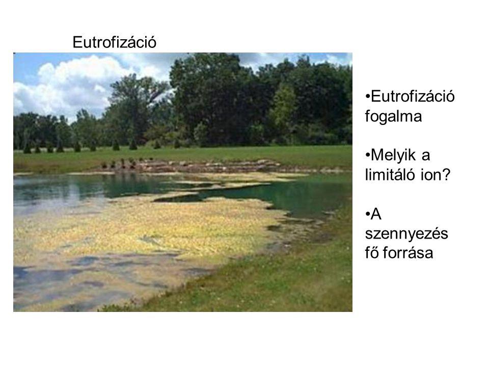 Eutrofizáció •Eutrofizáció fogalma •Melyik a limitáló ion? •A szennyezés fő forrása
