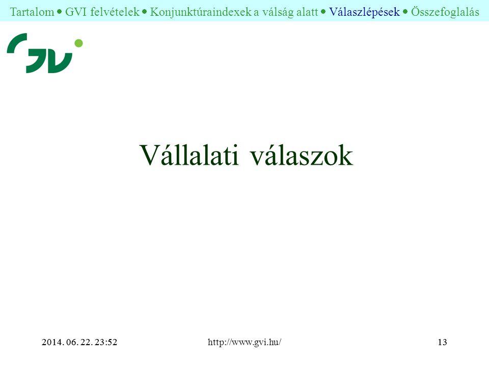 2014. 06. 22. 23:54http://www.gvi.hu/132014. 06.