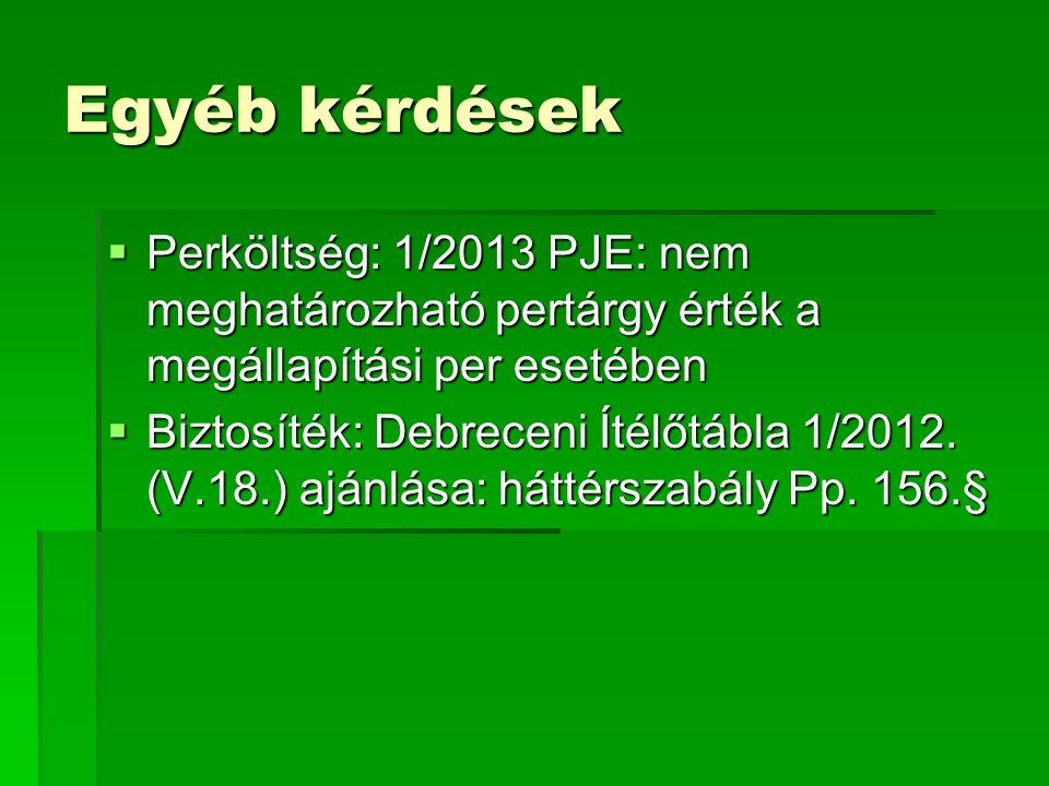 Egyéb kérdések  Perköltség: 1/2013 PJE: nem meghatározható pertárgy érték a megállapítási per esetében  Biztosíték: Debreceni Ítélőtábla 1/2012. (V.