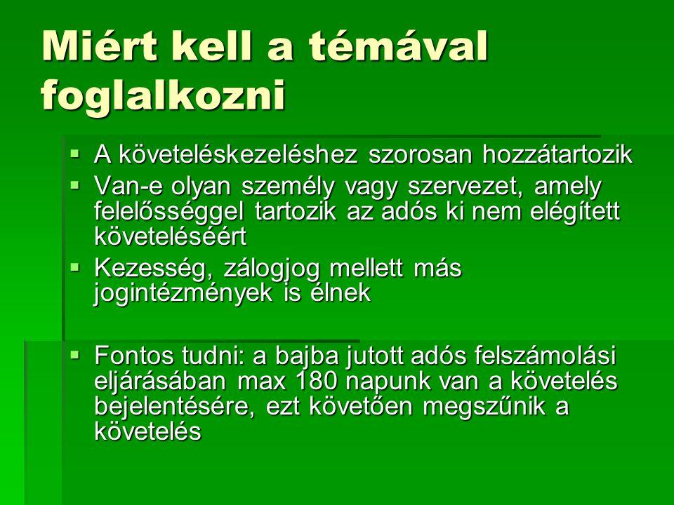 Előzmények  A magyar jogban először egy bírói döntésben került sor a korlátolt felelősség áttörésére.