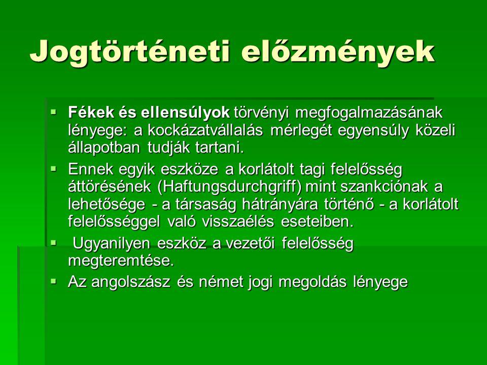 A magyar jogi szabályozás  Jellemzői:  Három törvény rendelkezik a társaság tagjainak és vezetőinek a felelősségéről:  Cstv, Gt, Ctv.