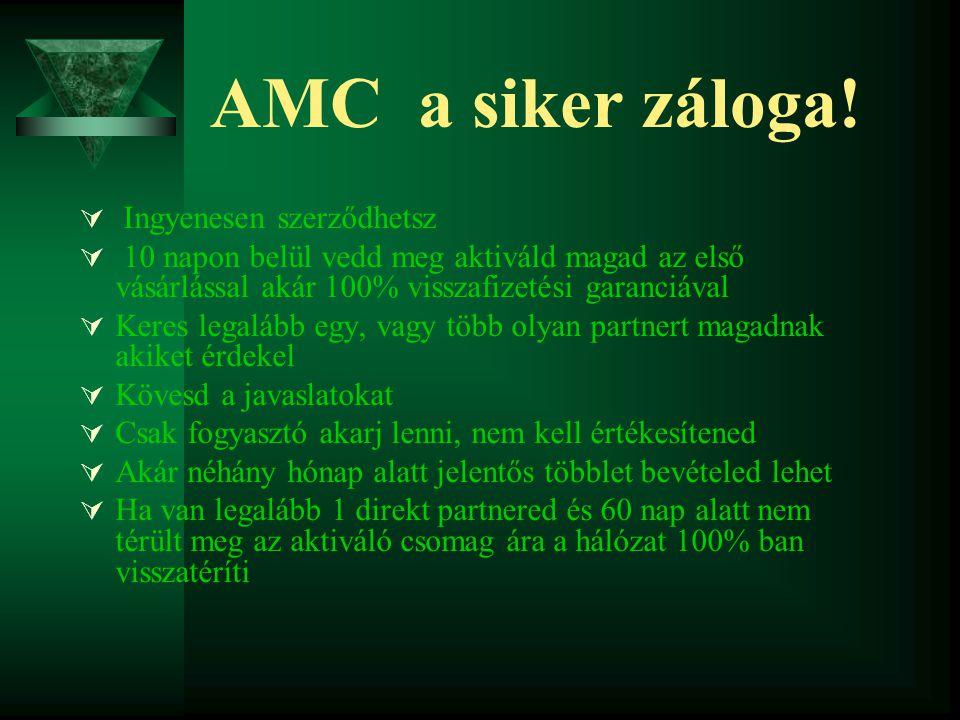 AMC a siker záloga.