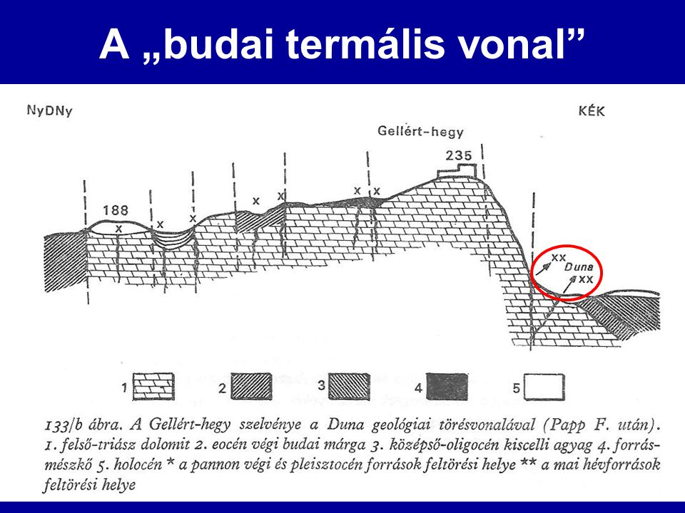 """A """"budai termális vonal"""""""