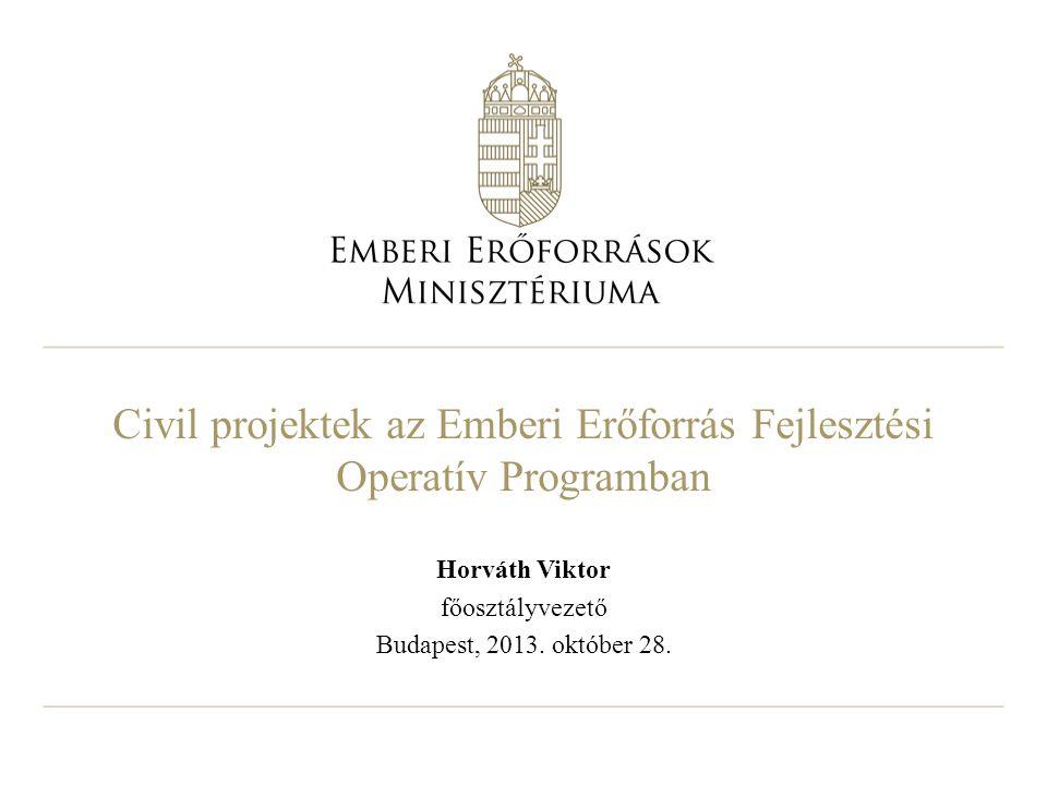 Civil projektek az Emberi Erőforrás Fejlesztési Operatív Programban Horváth Viktor főosztályvezető Budapest, 2013.