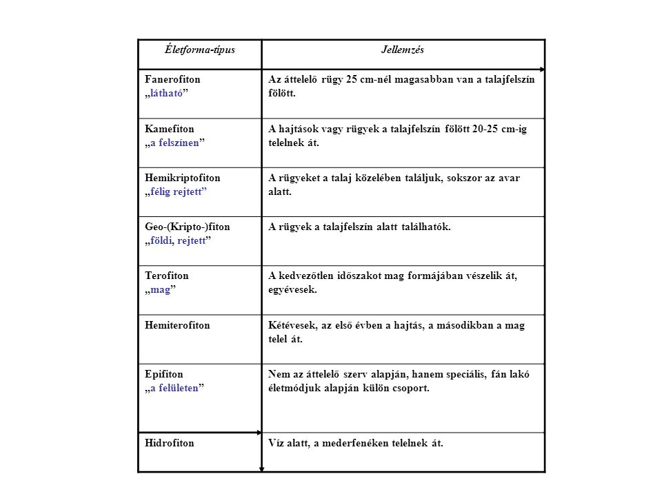 Biomok Vegetáció-formációk Forma – Raunkiaer Fiziognómia Növénytársulás Környezeti tényezők Niche