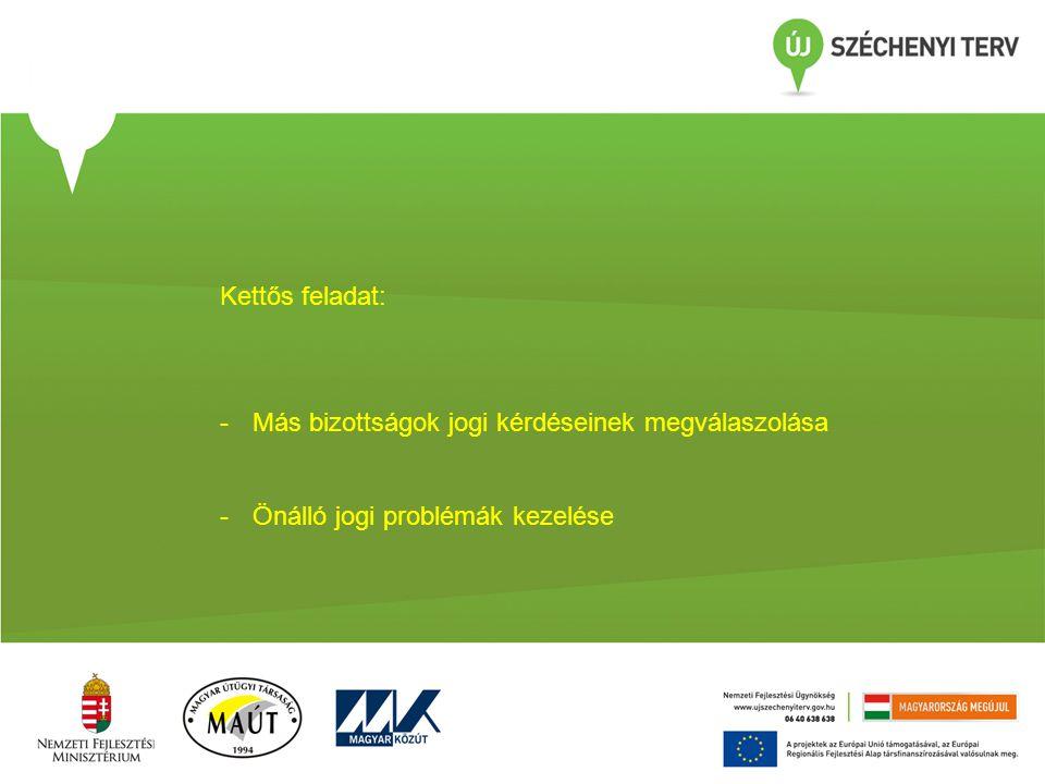 Kettős feladat: -Más bizottságok jogi kérdéseinek megválaszolása -Önálló jogi problémák kezelése