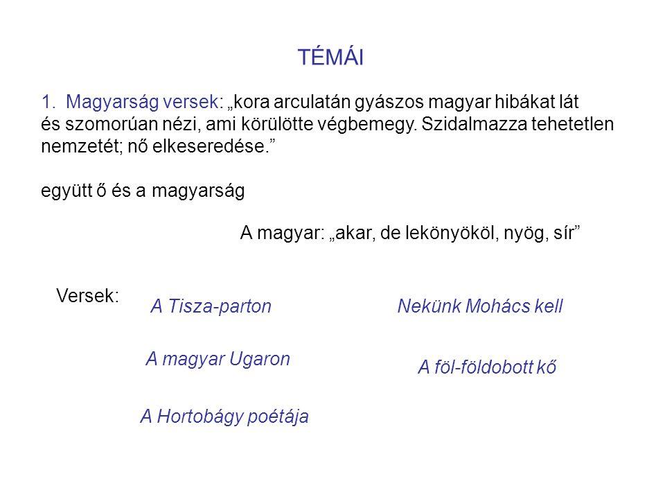 """TÉMÁI 1.Magyarság versek: """"kora arculatán gyászos magyar hibákat lát és szomorúan nézi, ami körülötte végbemegy."""