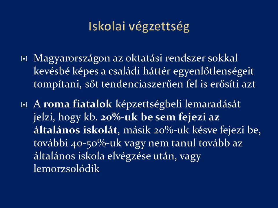  Magyarországon az oktatási rendszer sokkal kevésbé képes a családi háttér egyenlőtlenségeit tompítani, sőt tendenciaszerűen fel is erősíti azt  A roma fiatalok képzettségbeli lemaradását jelzi, hogy kb.