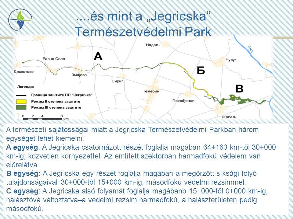 """....és mint a """"Jegricska Természetvédelmi Park A természeti sajátosságai miatt a Jegricska Természetvédelmi Parkban három egységet lehet kiemelni: A egység: A Jegricska csatornázott részét foglalja magában 64+163 km-től 30+000 km-ig; közvetlen környezettel."""