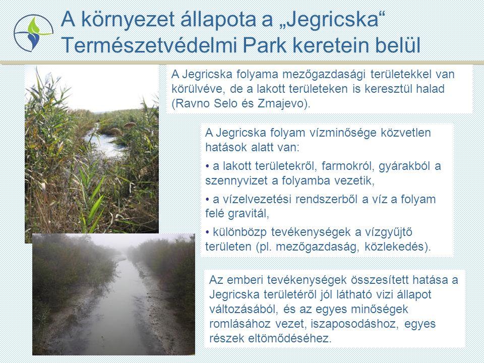 """A környezet állapota a """"Jegricska Természetvédelmi Park keretein belül A Jegricska folyama mezőgazdasági területekkel van körülvéve, de a lakott területeken is keresztül halad (Ravno Selo és Zmajevo)."""
