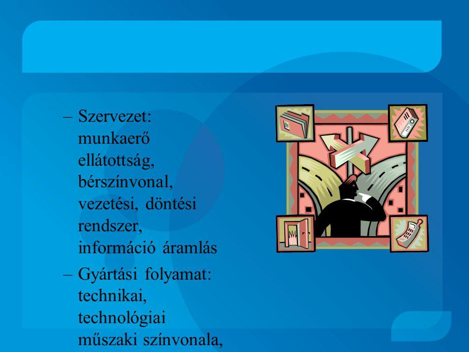 –Szervezet: munkaerő ellátottság, bérszínvonal, vezetési, döntési rendszer, információ áramlás –Gyártási folyamat: technikai, technológiai műszaki színvonala, költséghatékonyság a, logisztika