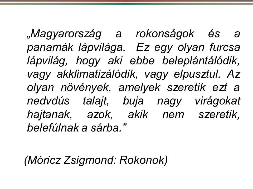 """""""Magyarország a rokonságok és a panamák lápvilága. Ez egy olyan furcsa lápvilág, hogy aki ebbe beleplántálódik, vagy akklimatizálódik, vagy elpusztul."""