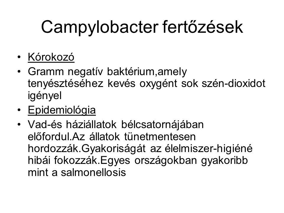 Campylobacter fertőzések •Kórokozó •Gramm negatív baktérium,amely tenyésztéséhez kevés oxygént sok szén-dioxidot igényel •Epidemiológia •Vad-és háziállatok bélcsatornájában előfordul.Az állatok tünetmentesen hordozzák.Gyakoriságát az élelmiszer-higiéné hibái fokozzák.Egyes országokban gyakoribb mint a salmonellosis
