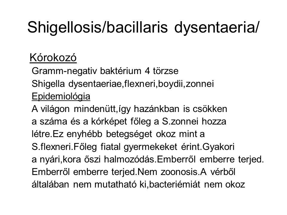 Shigellosis/bacillaris dysentaeria/ Kórokozó Gramm-negativ baktérium 4 törzse Shigella dysentaeriae,flexneri,boydii,zonnei Epidemiológia A világon mindenütt,így hazánkban is csökken a száma és a kórképet főleg a S.zonnei hozza létre.Ez enyhébb betegséget okoz mint a S.flexneri.Főleg fiatal gyermekeket érint.Gyakori a nyári,kora őszi halmozódás.Emberről emberre terjed.