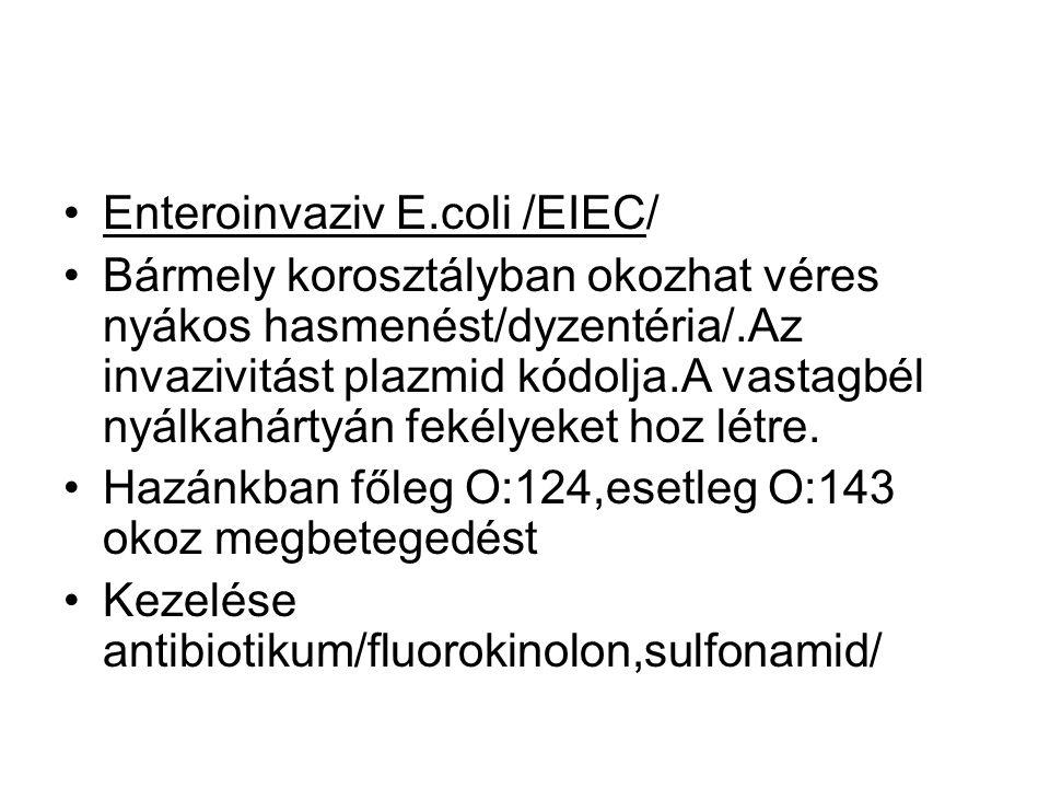 •Enteroinvaziv E.coli /EIEC/ •Bármely korosztályban okozhat véres nyákos hasmenést/dyzentéria/.Az invazivitást plazmid kódolja.A vastagbél nyálkahártyán fekélyeket hoz létre.