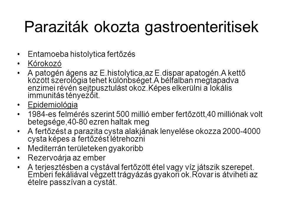 Paraziták okozta gastroenteritisek •Entamoeba histolytica fertőzés •Kórokozó •A patogén ágens az E.histolytica,az E.dispar apatogén.A kettő között szerológia tehet különbséget.A bélfalban megtapadva enzimei révén sejtpusztulást okoz.Képes elkerülni a lokális immunitás tényezőit.