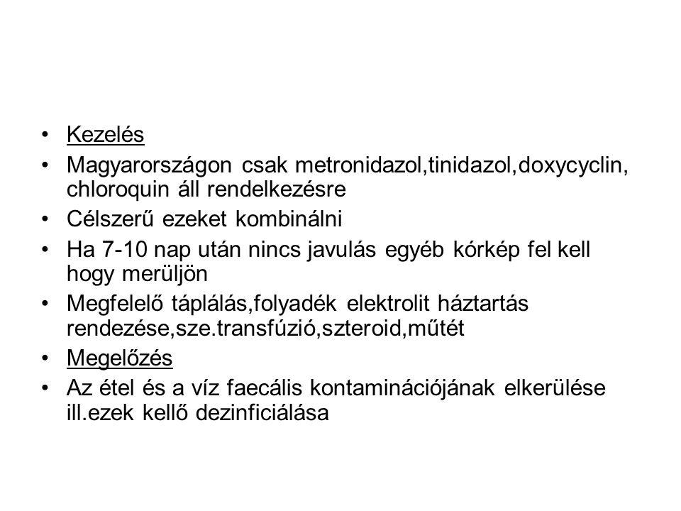 •Kezelés •Magyarországon csak metronidazol,tinidazol,doxycyclin, chloroquin áll rendelkezésre •Célszerű ezeket kombinálni •Ha 7-10 nap után nincs javu