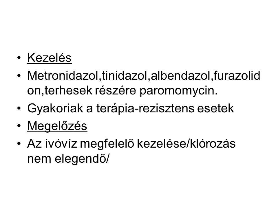 •Kezelés •Metronidazol,tinidazol,albendazol,furazolid on,terhesek részére paromomycin.