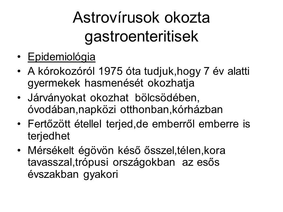 Astrovírusok okozta gastroenteritisek •Epidemiológia •A kórokozóról 1975 óta tudjuk,hogy 7 év alatti gyermekek hasmenését okozhatja •Járványokat okozh