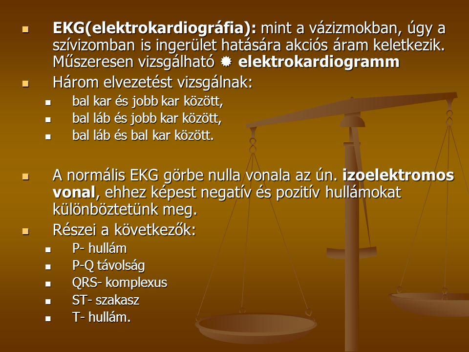  EKG(elektrokardiográfia): mint a vázizmokban, úgy a szívizomban is ingerület hatására akciós áram keletkezik. Műszeresen vizsgálható  elektrokardio
