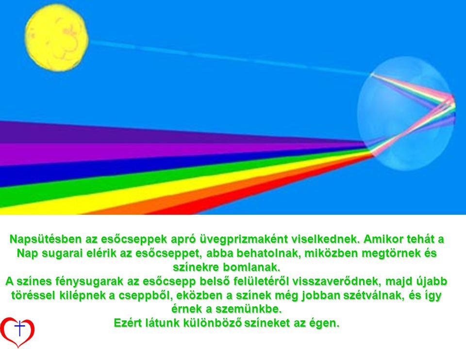Napsütésben az esőcseppek apró üvegprizmaként viselkednek.