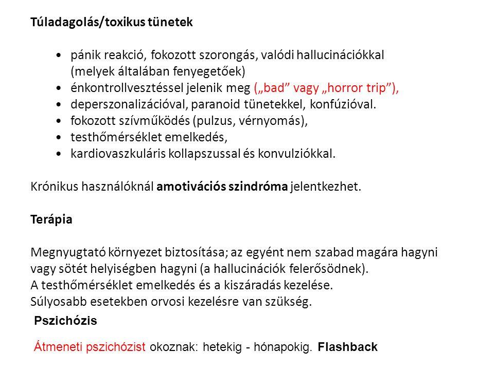 Gombák Légyölő galóca (Amanita muscarina): (szibériai sámánok) Hatása: sajátságos részegség, hallucinációkkal és víziókkal, pszichomotoros nyugtalanság alvás és pszichomotoros nyugtalanság.
