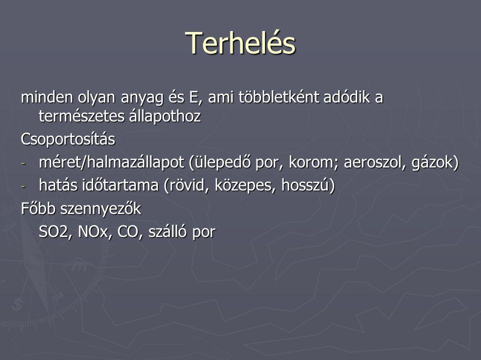 Terhelés minden olyan anyag és E, ami többletként adódik a természetes állapothoz Csoportosítás - méret/halmazállapot (ülepedő por, korom; aeroszol, g