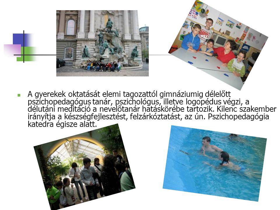 AA gyerekek oktatását elemi tagozattól gimnáziumig délelőtt pszichopedagógus tanár, pszichológus, illetve logopédus végzi, a délutáni meditáció a nevelőtanár hatáskörébe tartozik.
